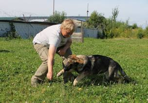 Hors s Putilovoy Gory (4)